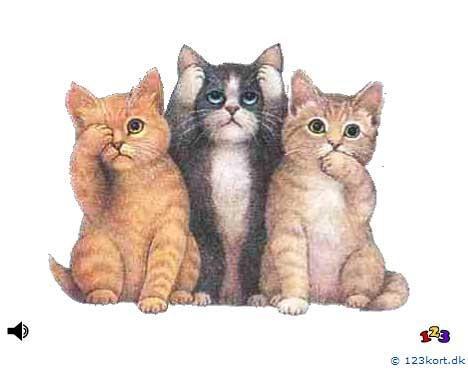 De tre katte