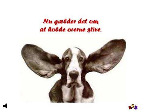 Stive ører