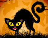 Hylende kat